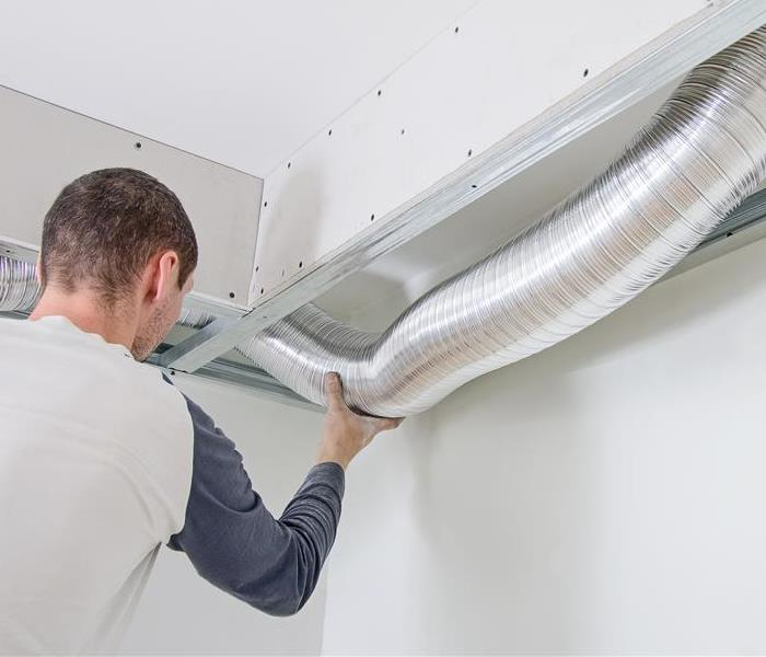 Mold Remediation It Is BEST To Leave Dealing With Mold To Professionals