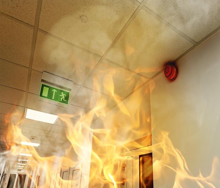 Commercial Hire the Best for Alsip Commercial Fire Damage