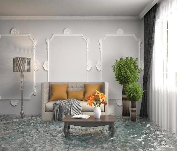 living room with standing water